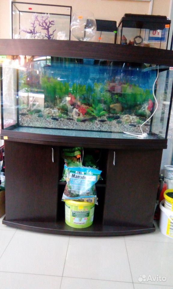 Панорамные аквариумные комплексы