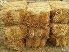 Тюки пшеничной соломы