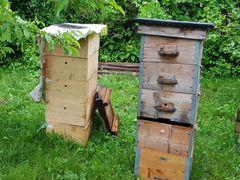 Пчелиные ульи многокорпусные