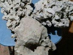Камни аквариумнын