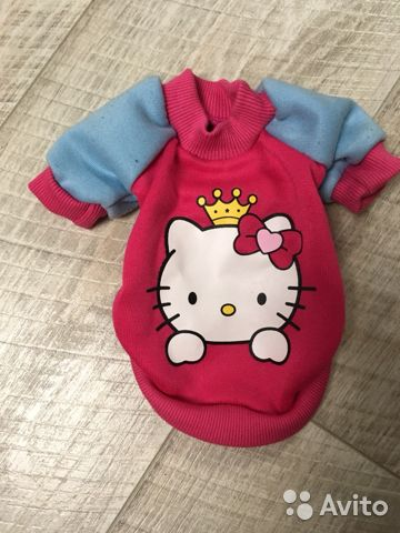 Clothes for small dogs 89158582211 buy 1