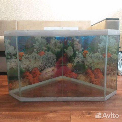 Aquarium 89103112387 buy 5
