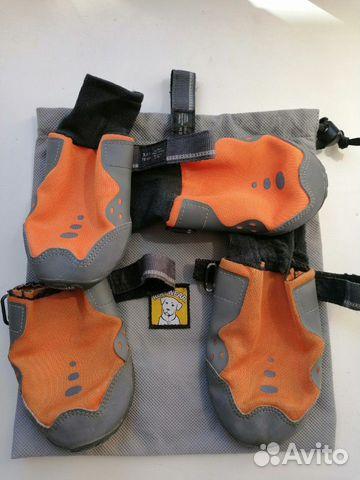 Ошейник. Обувь для собак  89521832456 купить 5
