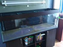 Аквариум 400 литров. Без рыбы