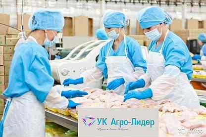 Работа в белгороде без опыта работы для девушек работа моделью в ельня